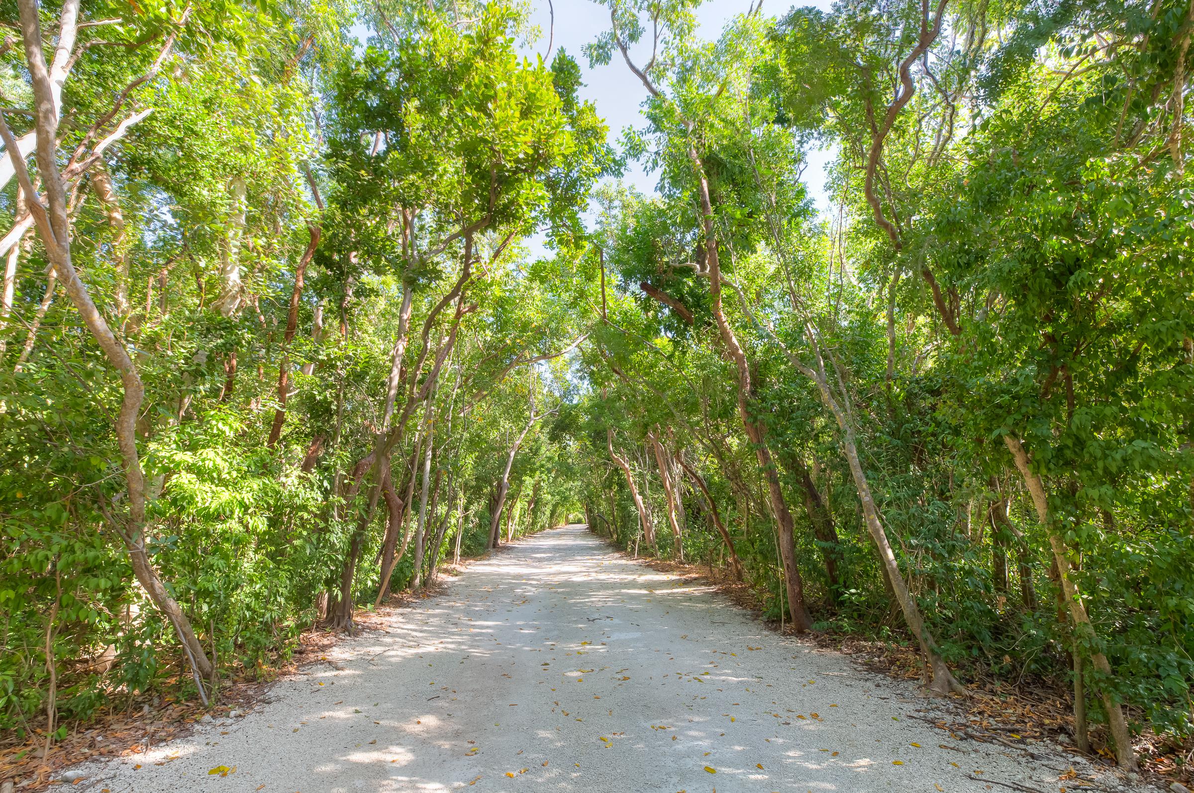 Ballast Trail (123)