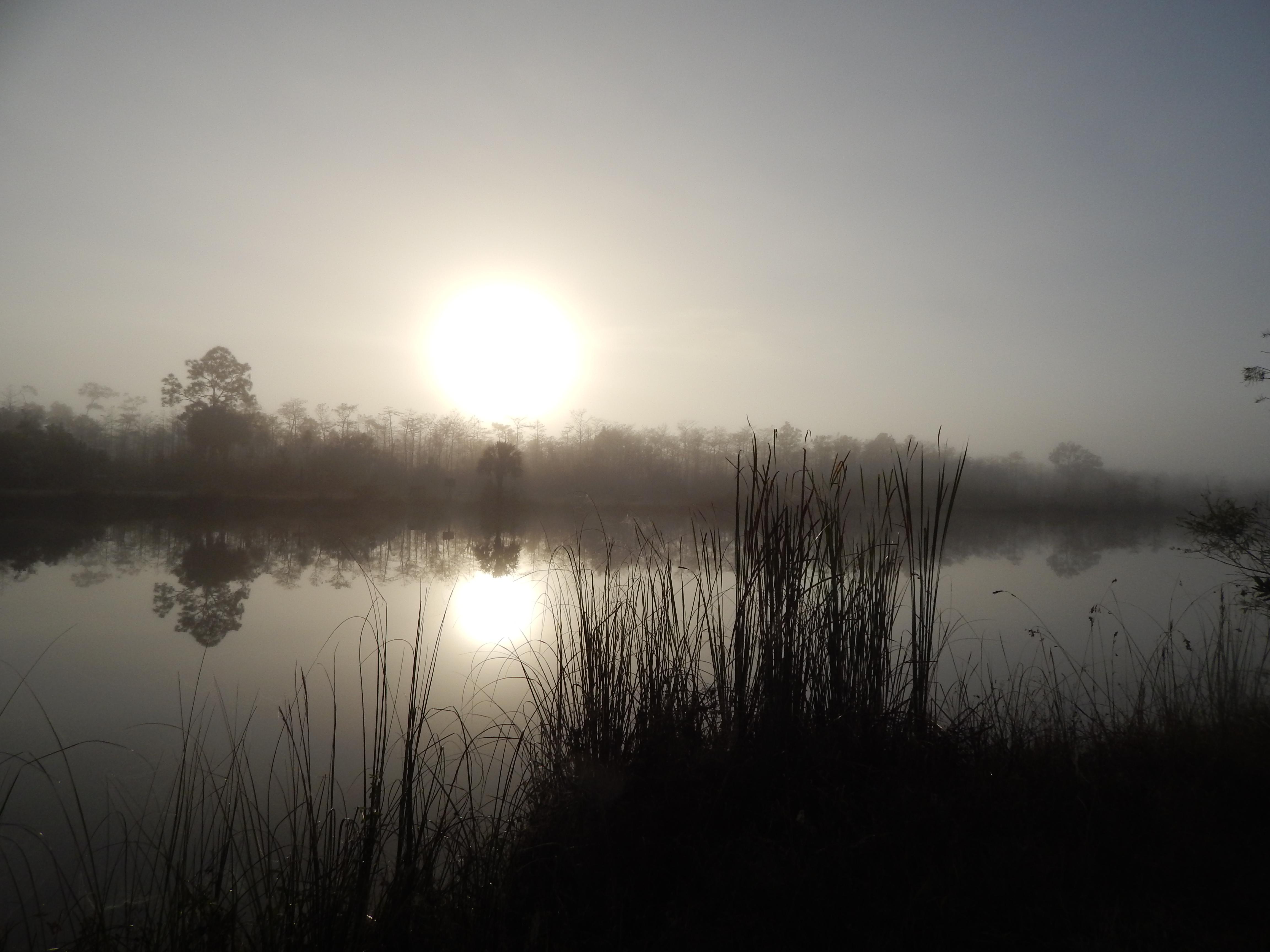 Popenhager Pond