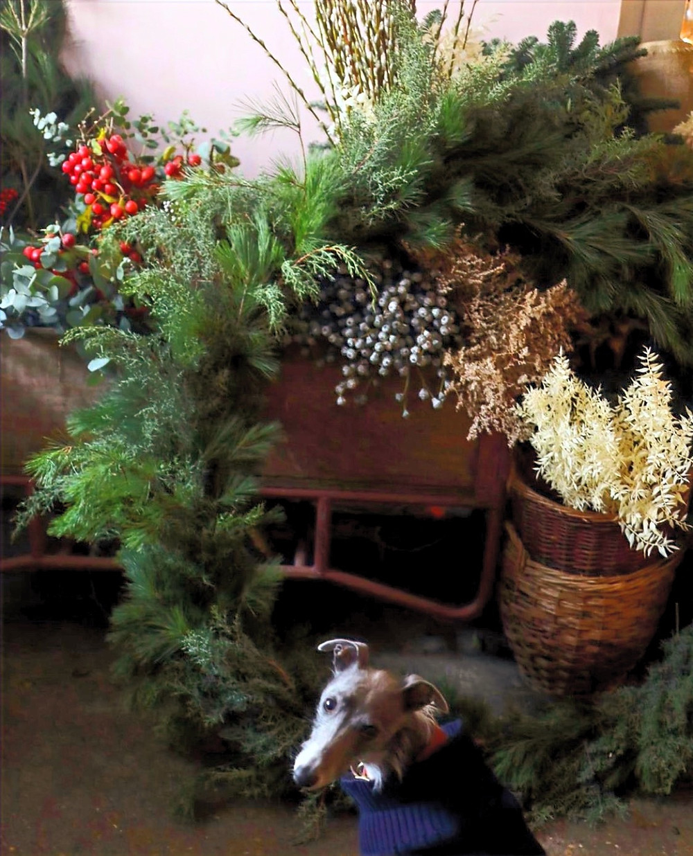Christmas wreath and garland with small dog and wheelbarrow filled with decorating for the holidays and Christmas