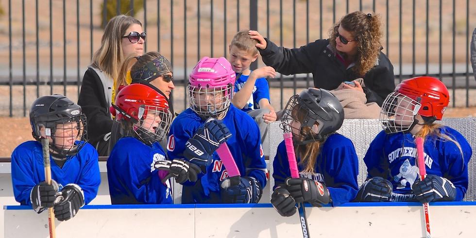 Youth Hockey Programs