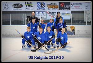 U8 Knights Team.JPG