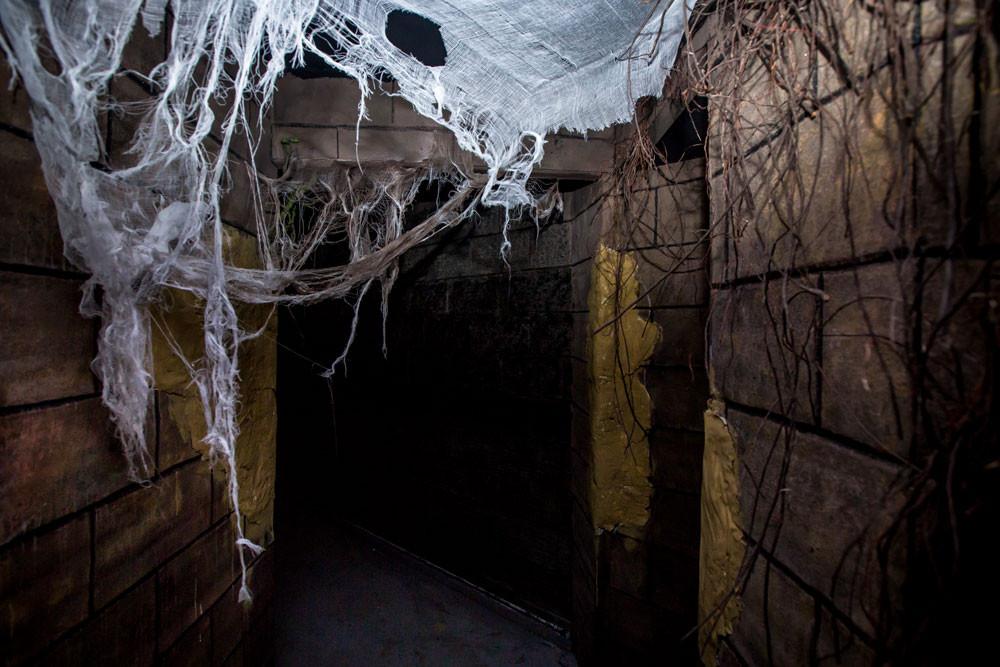 Behind The Screams Tunnel People Walkwayg
