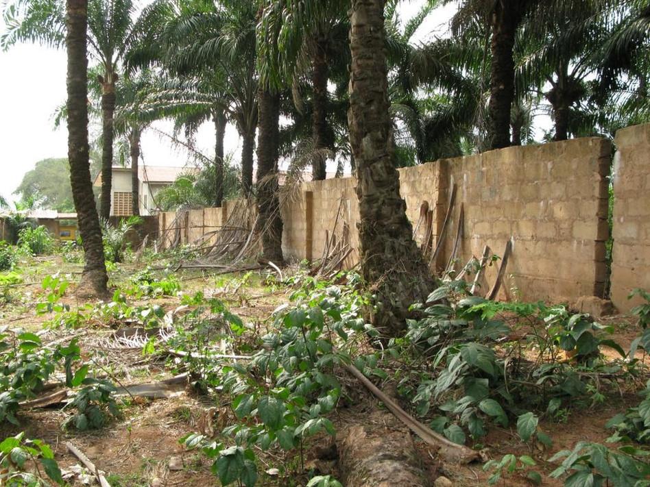 site solarplant eastern wall.JPG