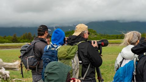 Bear Viewing Photographer.PNG