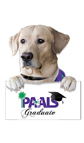 Dog with paws no hat for sign.png