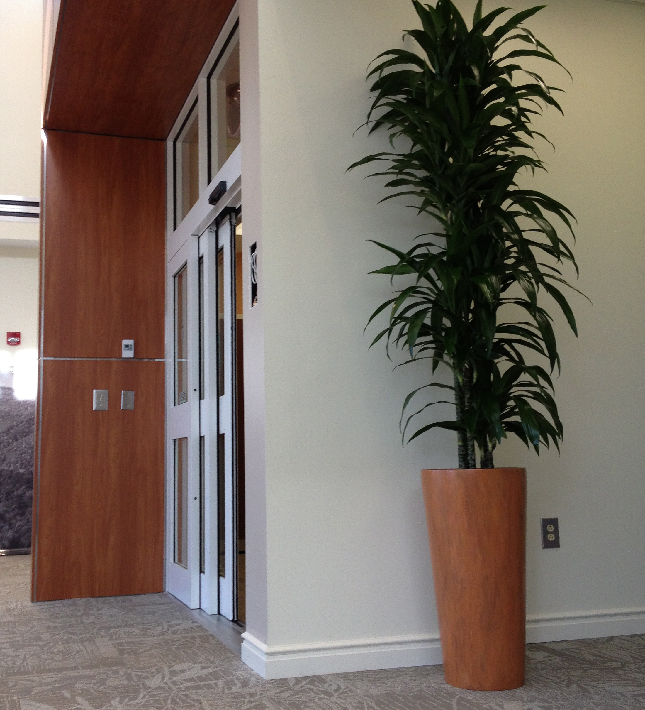 Tall vase in office