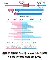 がんゲノムその3.jpg