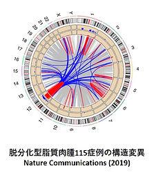 がんゲノムその2.jpg