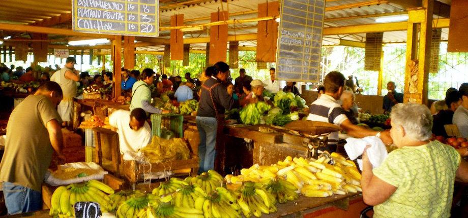 WEB Farmer's Market.jpg