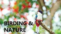 MOBILE BirdNature.jpg