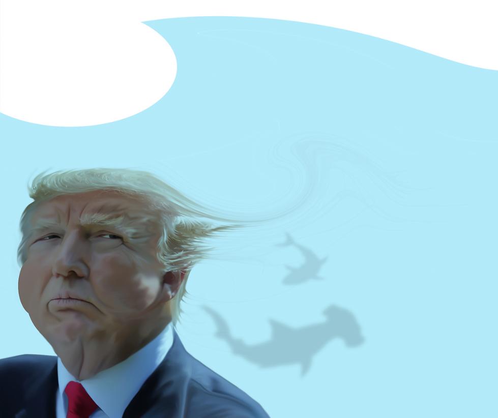 TrumpBlueWave.png