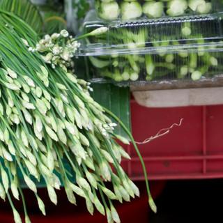 Vietnam Food Security Workshop 04