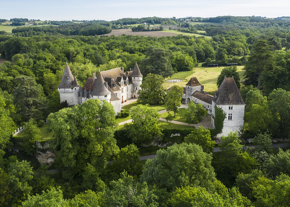 Chateau de bridoire.jpg