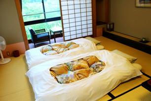 Japan, Keigetsu Ryokan at Higurami Hot Spring in Nagano - Great Hot spring and Japanese room(Tatami)