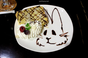Osaka, Rabbit cafe where you can see a pretty rabbit/ Usagi cafe