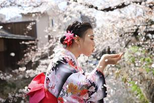 Kyoto Travel, Pretty Kimono in beautiful Kyoto/ Kimono Rental Shop/ Kimono Selection Tips