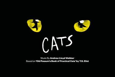 CatsOfficialWebHeader-768x512.jpg