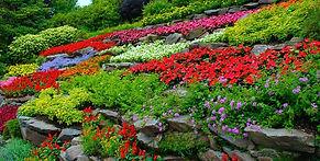 colorful-flowers-terraced-hillside-garde