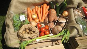 뉴질랜드 최고의 유기농 공인인증 - BioGro