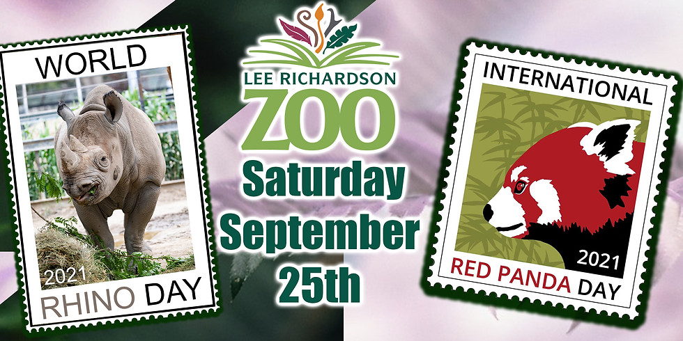 International Red Panda Day & World Rhino Day