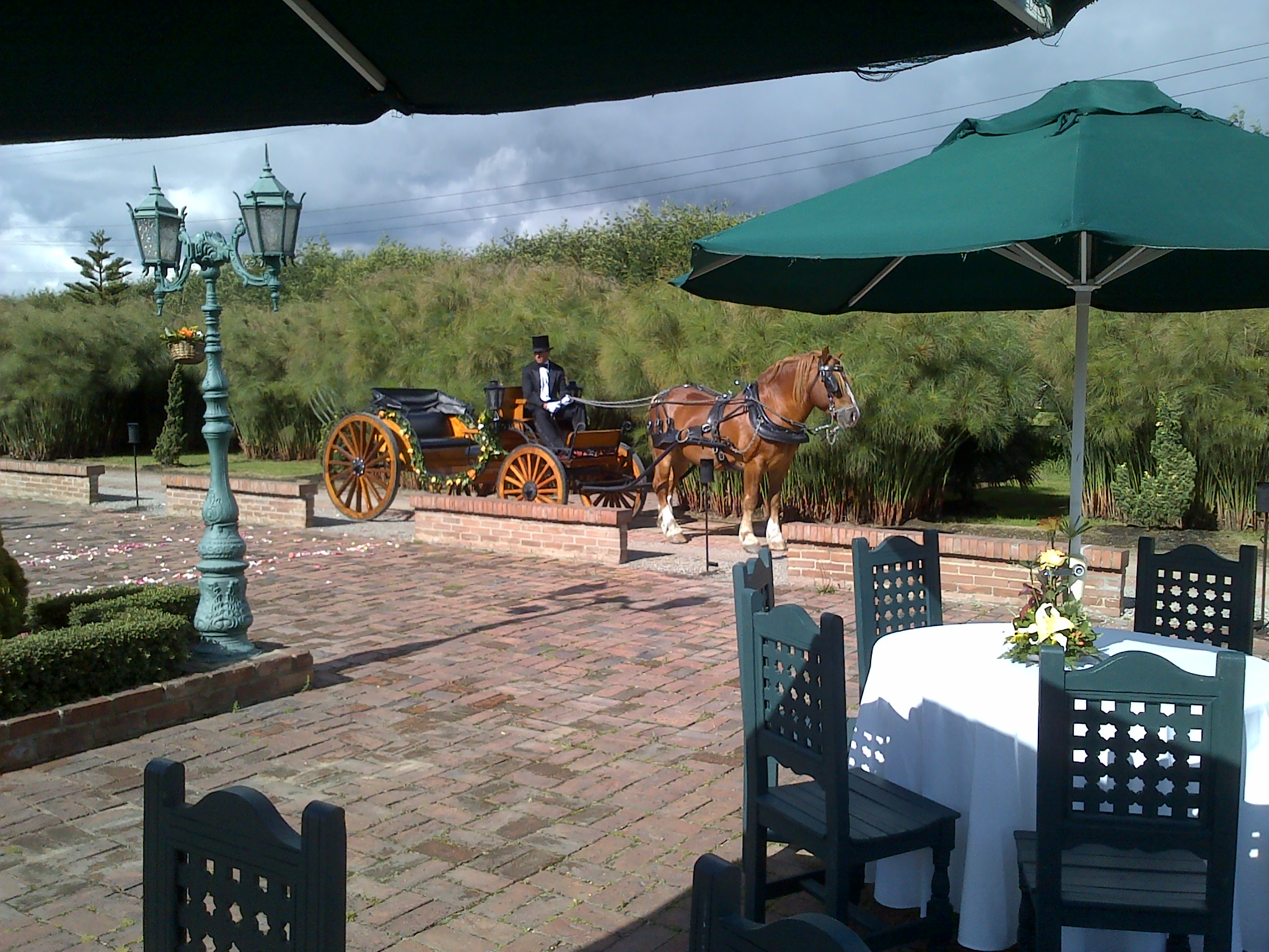 carruaje para boda