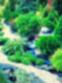 Ландшафтный дизайн спб, ландшафтные работы спб, дизайн сада спб, Ботаника СПб, земельные работы спб