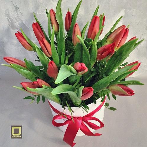 Тюльпаны в коробке. 156