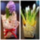 Весенние первоцветы, 8 марта, женский день