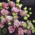Доставка цветов спб.