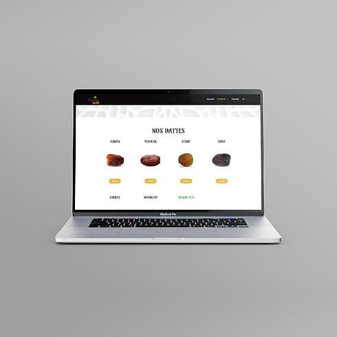 Site web page produits-01.jpg