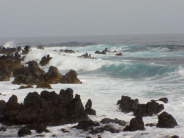 Maui (6)