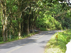 Maui (1)