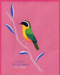 hummingbird 01003.jpg