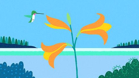 hummingbird poster pic.jpg