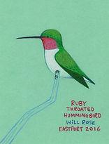 hummingbird 01002_edited_edited.jpg
