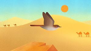 Nightingale_desert.png