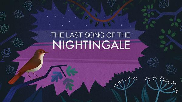 Nightingale titles.jpg