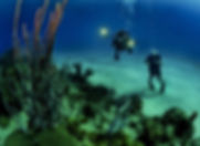 scuba diving center business sale in cyp
