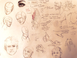 More anatomy
