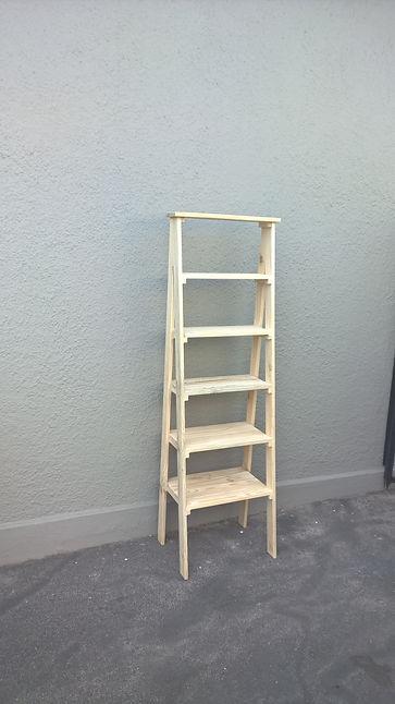 ladder bookshelf 3.jpg
