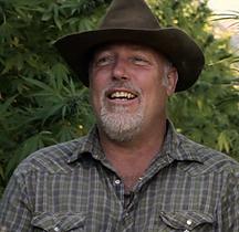 cannabis,marijuana , cannabis farming, cannabis film