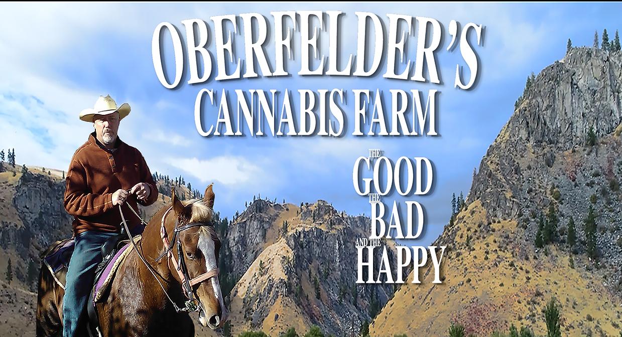 Cannabis Farm, legal cannabis