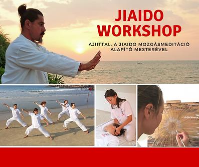 JIAIDO Workshop Ajiittal
