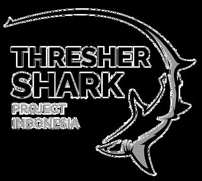 logo-thresher-shark_edited.png