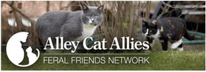Alley Cat Allies