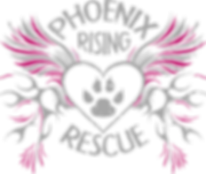 phoenixrisingrescue_logo.png