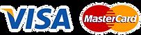transparent-logo-visa.png