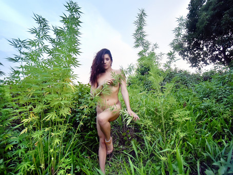 Mother Nature with Charli Louise