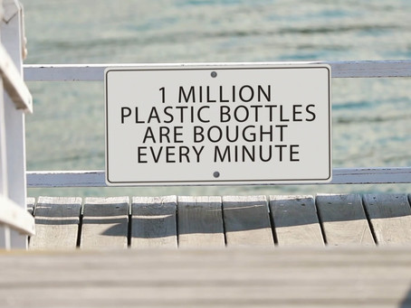 Facts with Plastic Free Beaches
