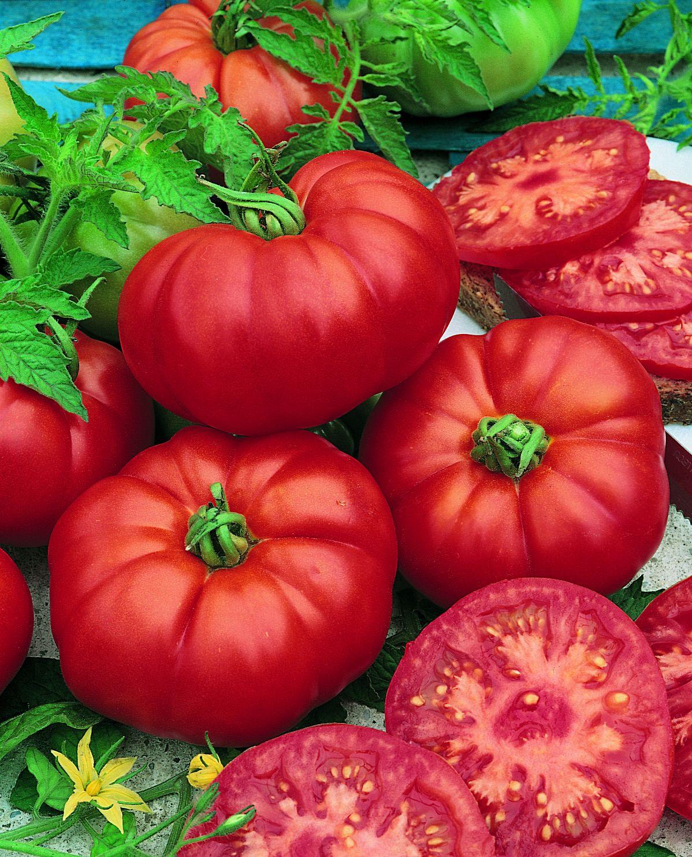 Tomato Beefsteak.jpg